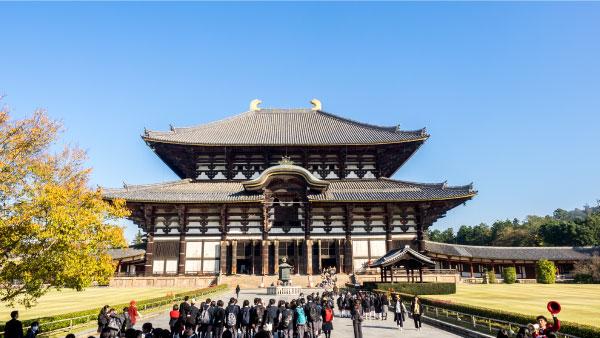 中2奈良京都学習旅行